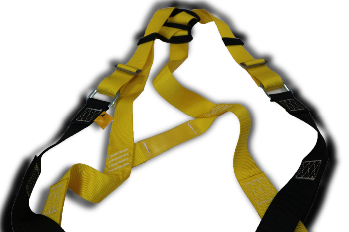 Image of Harness 6